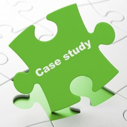 Risk Advisory Services Case Studies