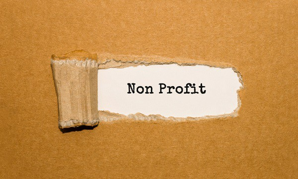 Mission Possible: Profile of an Effective Not-For-Profit Governing Board